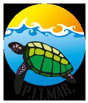 Actualizaciones web PITMAR